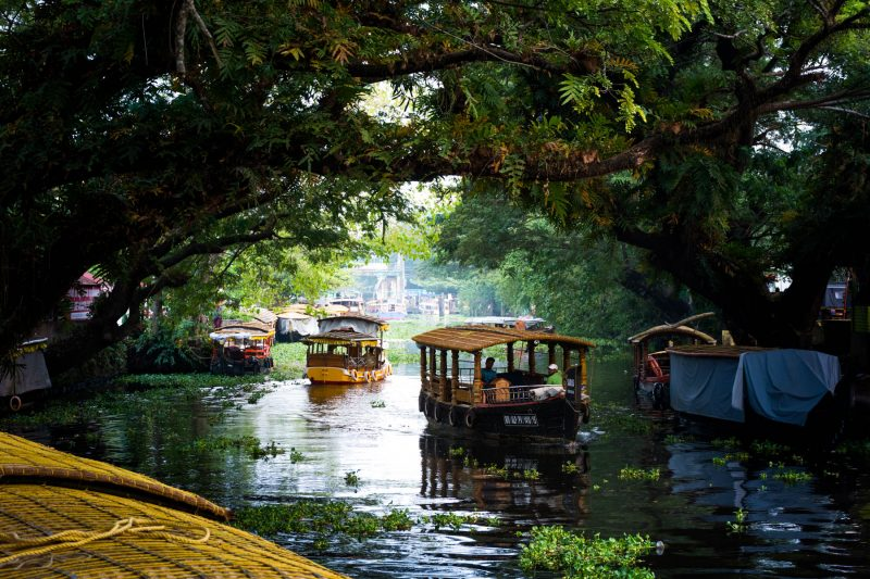 back-waters-alleppey